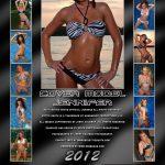 Hottie Shots 2012 Bikini Calendar for Swim Rags