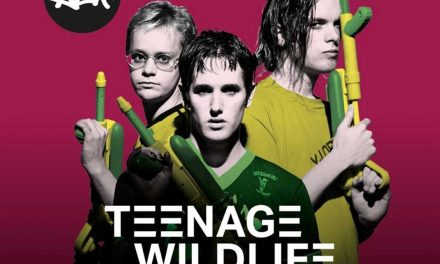 Teenage Wildlife: 25 Years Of Ash – Released February 14th 2020 via BMG