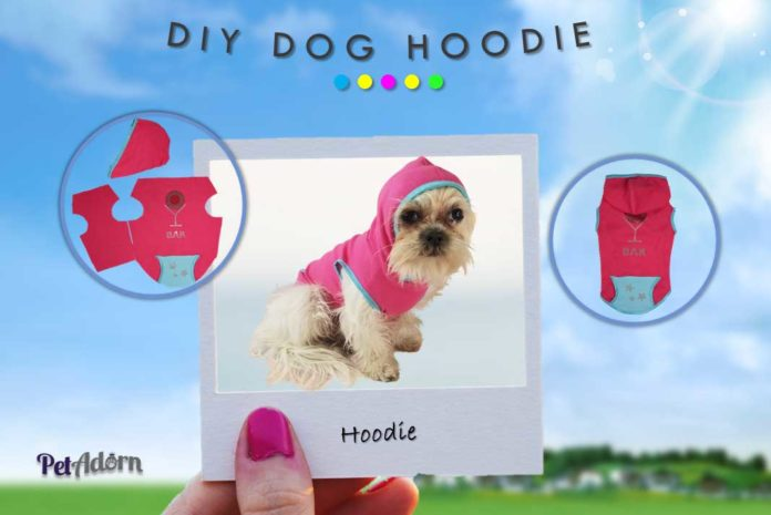 How to Make Your Own DIY Dog Hoodie - California Pretty Magazine