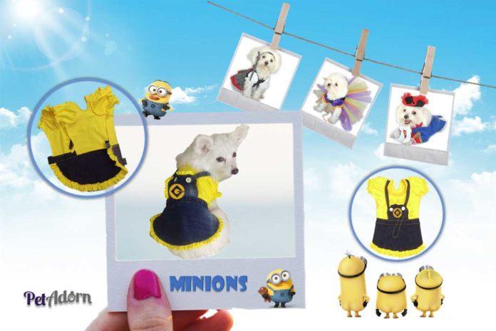 How to Make a DIY Minion Dog Costume For the Ultimate Pet Fashion Experience - California Pretty Fashion Magazine